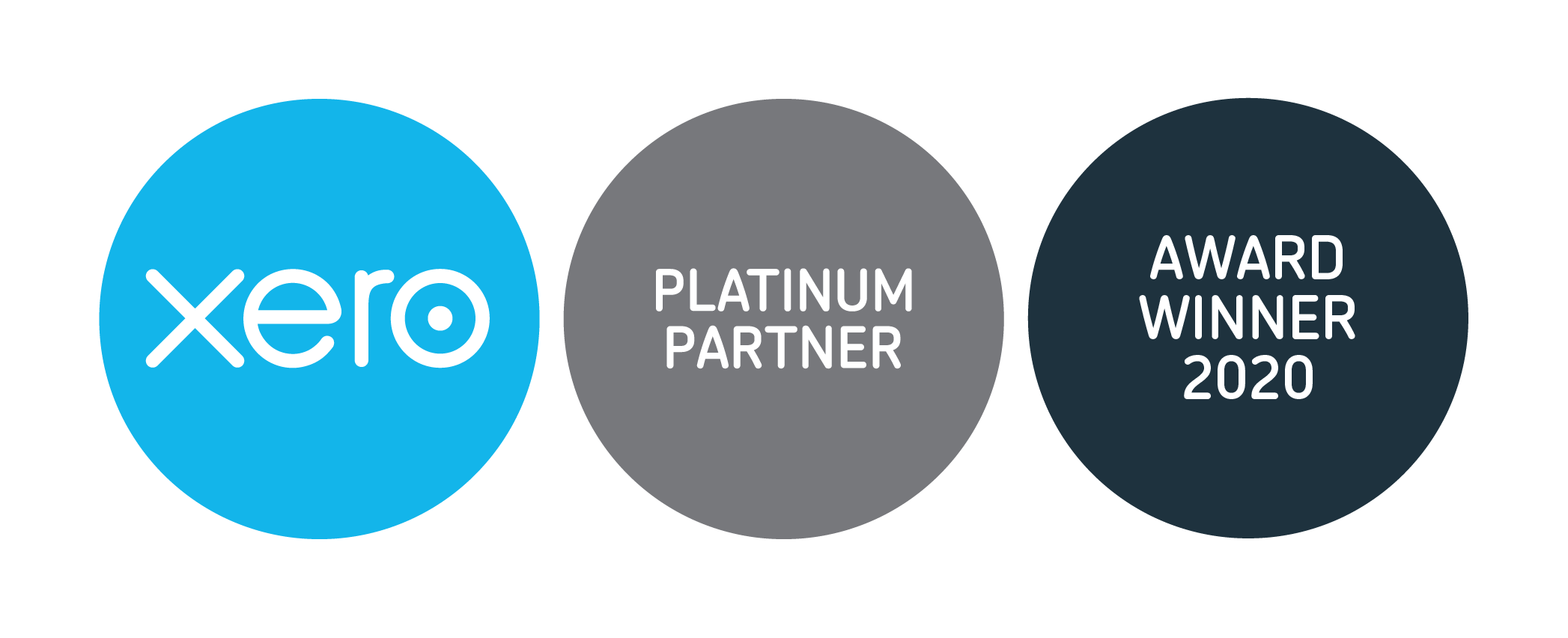 Xero Awards 2020 Partner Badges Platinum